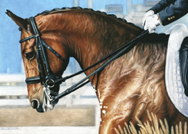 equestrian note cards, horse shows, alabama horse shows, dressage horse shows