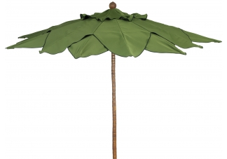 Palm Umbrella