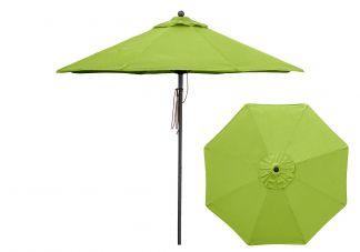 Pistachio umbrella