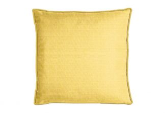 PARA Tempotest Michelangelo Pineapple Pillow