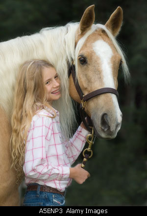 Palomino Horse Shows, Alabama Palomino Horse Shows, Horse Shows, alabama horse shows