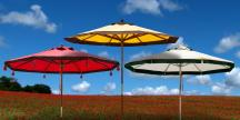 Floral Collection Designer Umbrellas