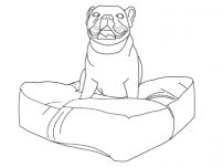 Custom Designer Dog Beds
