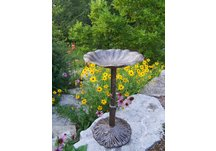 Cast Aluminum Lily Bird Bath
