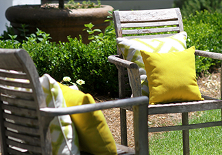 Yellow Decorative Throw Pillows